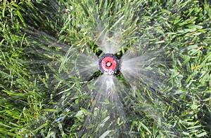 sprinkler repair denver